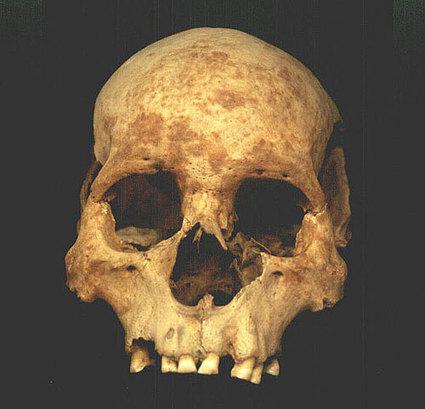 Restos óseos demuestran que los mexicas practicaban la antropofagia | Arqueología, Historia Antigua y Medieval - Archeology, Ancient and Medieval History byTerrae Antiqvae (Grupos) | Scoop.it
