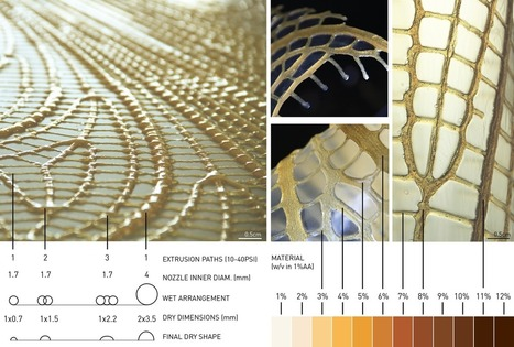 Materials Ecology: design that works with and is inspired by nature. | SynBioFromLeukipposInstitute | Scoop.it