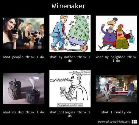 Winemaker | What I really do | Scoop.it