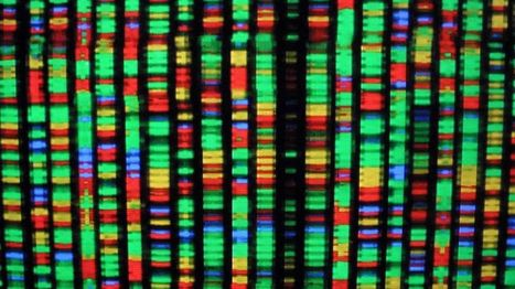 A startup expands the DNA alphabet to make new drugs | SynBioFromLeukipposInstitute | Scoop.it