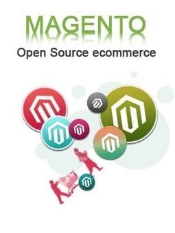 Magento Customization and Development In India   Web Development   Scoop.it