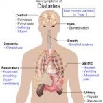 Diabetes Treatment - get down Your Blood Sugar balanced.Know the Natural method | Healthylife | Healthy Life|Free health and fitness Doctor. | Scoop.it