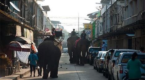 Les villes du nord de la Thaïlande du Nord-Est (Isan).  | Voyage Thaïlande-Voyage au pays des merveilles | Scoop.it