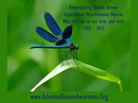 Remembering Debbie Brewer, Inspirational Mesothelioma Warrior, Who lives on in our lives and work | Asbestos and Mesothelioma World News | Scoop.it