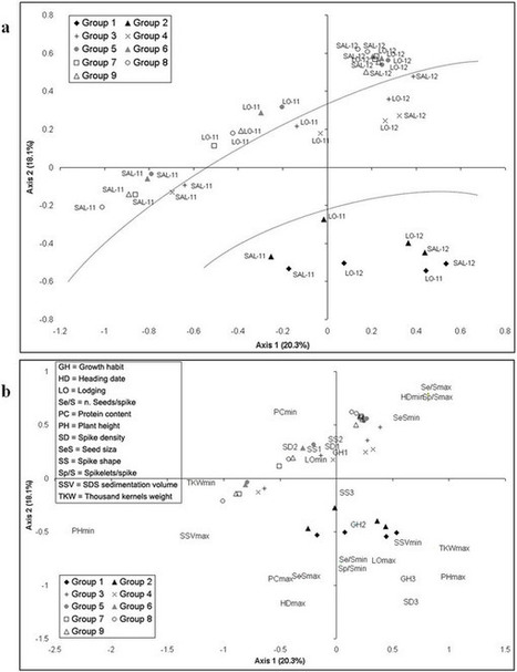 Diversity trends in bread wheat in Italy during the 20th century assessed by traditional and multivariate approaches : Scientific Reports : Nature Publishing Group | plant cell genetics | Scoop.it