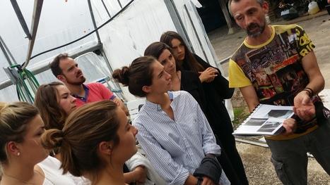 Les étudiants de SciencesCom visitent une ferme de Spiruline Horus #TransitionPositive | Innovation territoriale, développement durable et projets d'avenir | Scoop.it