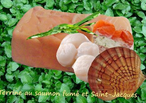 Recette de terrine au saumon fumé et Saint-Jacques (ou pétoncles) | Street food : la cuisine du monde de la rue | Scoop.it
