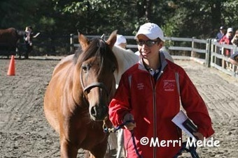 Merri Travels: Kyle Gibbon: Young Rider/Junior World Endurance ... | Endurance and Competitive Trail Riding | Scoop.it