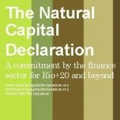 Ecosystem Marketplace - The Natural Capital Declaration Moves <br/> Forward With Implementation Phase | Nature + Economics | Scoop.it