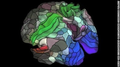 New brain map identifies 97 new areas previously unknown | Amazing Science | Scoop.it
