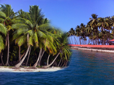 Gorgeous Andaman and its Love at First Sight Allures   Andaman Travel Guide   Scoop.it
