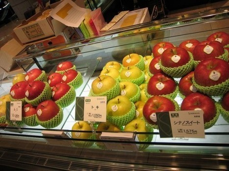 Japanese Shop Sells Perfect Fruits as Luxury Items | Strange days indeed... | Scoop.it