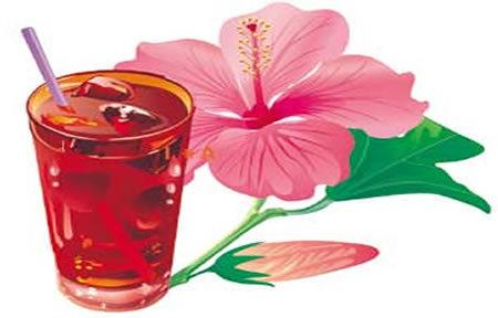Flor de Jamaica  (Hibiscus sabdariffa ) Una Manera Natural de Mejorar Tu Salud..!!   ECOLOGIA Y SALUD: Plantas aromáticas y medicinales.   Scoop.it