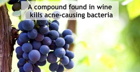 Antioxidant Found In Grapes Can Help Treat Acne | Food, Health and Nutrition | Scoop.it