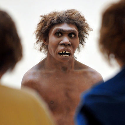 Neanderthal genes rev our immune systems. And our allergies | Views of Evolution | Scoop.it