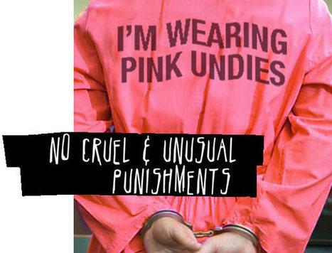 8th Amendment - No Cruel and Unusual Punishments | NicolePapa8 | Scoop.it
