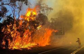 Twitter | NPWS fire management | Scoop.it