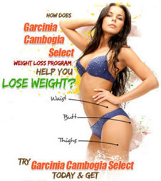 Garcinia Cambogia | Weight Loss | Scoop.it
