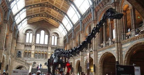8 Incredible Museums Sharing on Pinterest | Pinterest | Scoop.it