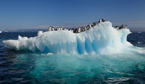 La CIA cierra las puertas al acceso a datos precisos del cambio climático | Educacion, ecologia y TIC | Scoop.it