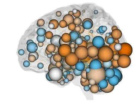 Are You Paying Attention? Brain Connections Predict How Well You Concentrate   Learning & Mind & Brain   Scoop.it