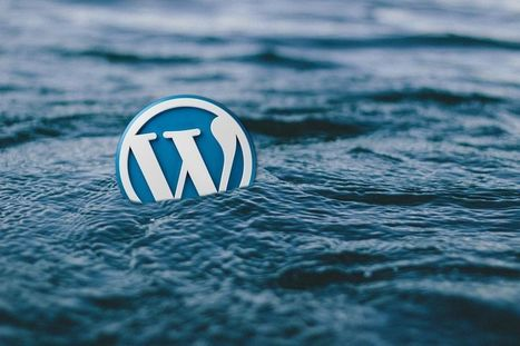 WordPress Social Ring - Plugin de Partage Social simple et efficace - Yes We Blog !   Freewares   Scoop.it