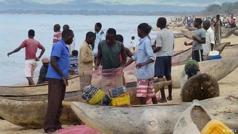 Mosquito nets decimate Malawian fish stocks | Global Ideas | DW.COM | 06.01.2016 | Farming, Forests, Water, Fishing and Environment | Scoop.it