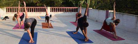 Hatha Yoga Teacher Training India | School of Holistic Yoga and Ayurveda Goa | Scoop.it