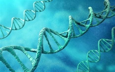 Junk DNA: Our Interdimensional Doorway to Transformation | Wake Up World | promienie | Scoop.it