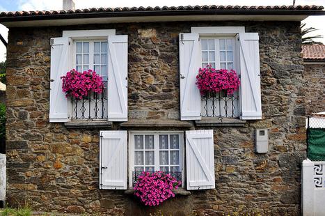 Petunias en los balcones by Lucas | Mis imágenes | Scoop.it