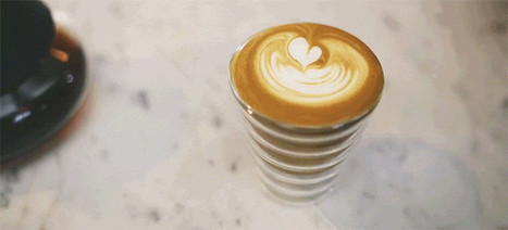 A Rapid Fire Look at the Different Ways to Make Coffee | Coffee News | Scoop.it