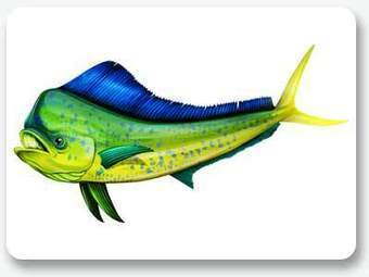 Adorn Your Vessel With Boat Fish Graphics! | Business | Scoop.it