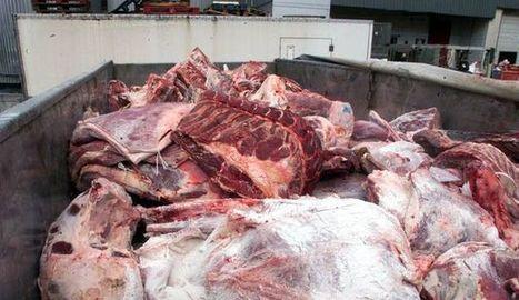 Abattoirs : les associations de défense des animaux demandent plus de moyens - L'Express | Le Fil @gricole | Scoop.it