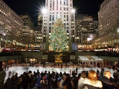 Merry and bright: Beautiful Christmas trees to visit | Christmas Trees and More | Scoop.it