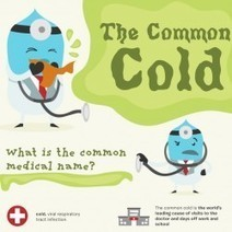 The Common Cold | Visual.ly | Infographics for English class | Scoop.it