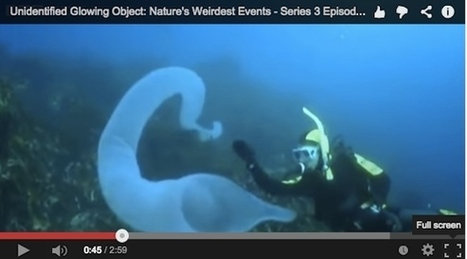Unidentified Glowing Object: Nature's Weirdest Events - BBC Series 3 Episode 2 | Studying Teaching and Learning | Scoop.it