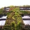 Enchúlamelo verde! El jardín vertical en la arquitectura   Cultivos Hidropónicos   Scoop.it