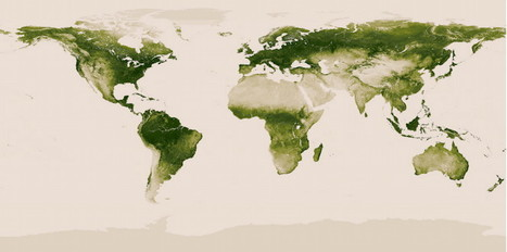 NOAA's new interactive map shows all the vegetation on planet Earth | Resistance to antibiotics | Scoop.it