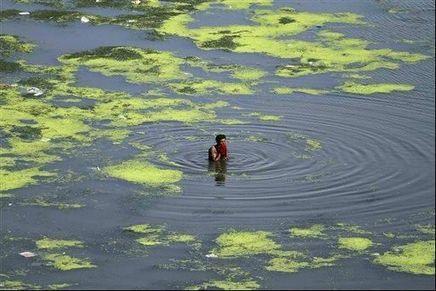 Gujarat HC takes up pollution in Sabarmati, Vishwamitri, Tapi and Aji | EVS | Scoop.it