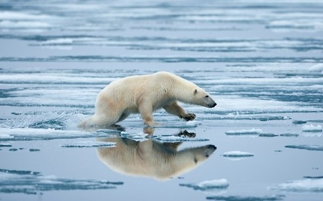 IPCC report: global warming is 'unequivocal'  - Telegraph | wildfire climate | Scoop.it