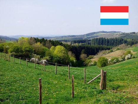 In hoeverre beïnvloedt meertaligheid het Luxemburgse onderwijs? - Maak werk van onderwijs   Taalberichten   Scoop.it