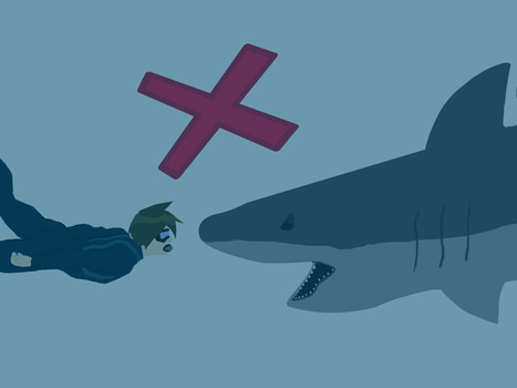 How to Prevent a Shark Attack | All about water, the oceans, environmental issues | Scoop.it
