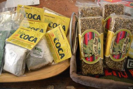 How Coca Leaf Became Colombia's New Superfood | Ayahuasca  アヤワスカ | Scoop.it