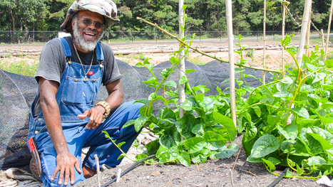 Urban Farmer Maurice Small on the Connection Between Food, Going Outside and Intuitive Awareness [episode 7] | Economic Networks - Networked Economy | Scoop.it