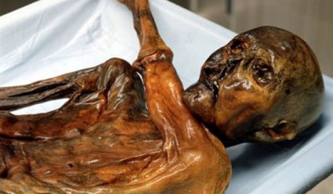 Full genome of Otzi the Iceman is published | Not Exactly Rocket Science | Discover Magazine | Plant Genomics | Scoop.it