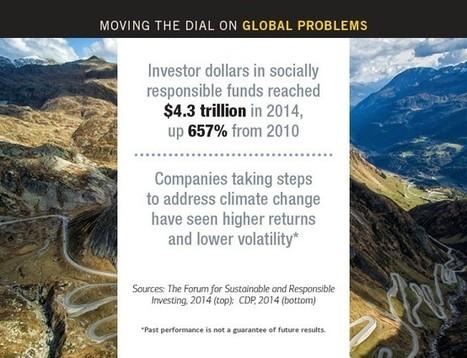 Investing for Maximum Impact | Impact Investing and Inclusive Business | Scoop.it