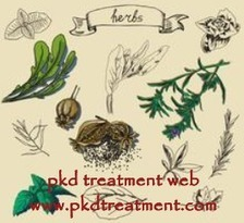 How to Treat PKD with Cyst 7 cm and Creatinine 3 - PKD Treatment Web | Kidney | Scoop.it