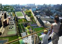 Thriving Urban Ecosystems - a bird's eye view of green roof tops | Transition Belsize | Vertical Farm - Food Factory | Scoop.it