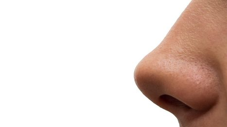 Five genes identified that give your nose its shape | Amazing Science | Scoop.it
