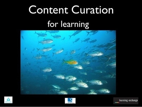 Curation Tools are Cool! – DEN Blog Network | Metawriting | Scoop.it
